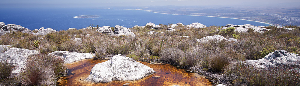 View from Table Mountain, Cape Town, looking north to Table Bay and Robben Island